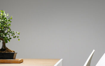 bonsai-blogheader