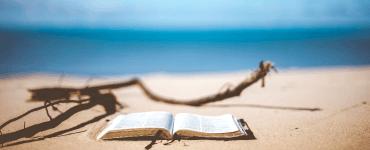 investeringsbøger til sommerlæsning